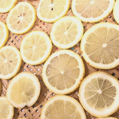 アロマサロンColourの精油定期便ーレモンの精油